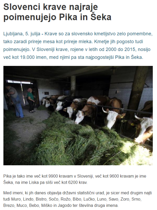 STA Pika in Šeka